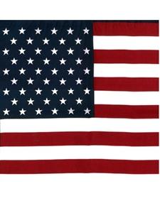 American Flag Patriotic Silk Pocket Square 17 Inches 30221