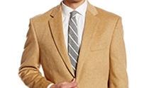 Palm Beach Brand | Blazers & Sport Coats Collection | Sam's Tailoring Fine Men's Clothing