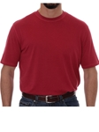 Robert Talbott Red Turner Peached Jersey T-Shirt PK401-04 - Spring 2016 Collection Polo | Sam's Tailoring Fine Men's Clothing